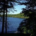 Walden Pond End Of Summer by Lawrence Christopher