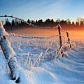 Warm Cold Winter Sunset by Romeo Koitmae