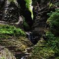 Watkins Glen by InTheSane DotCom