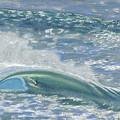 Waverider by Patti Bruce - Printscapes