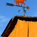 Weathervane by Robert Lacy