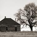 West Texas Winter by Marilyn Hunt