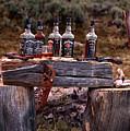 Whiskey And Guns by Leland D Howard