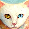 White Cat by Shijun Munns
