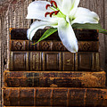White Lily On Antique Books by Garry Gay