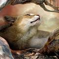 Wildcat Sunrise by Carol Cavalaris