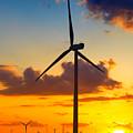 Wind Turbines by Gabriela Insuratelu