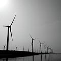 Windmill by Nadia Hung