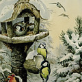 Winter Bird Table With Blue Tits by Carl Donner