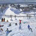 Winter Fun by Andrew Macara