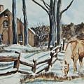 Winter Grazing  by Charlotte Blanchard