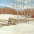 Winter Poplars 2 by Richard De Wolfe