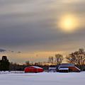 Winter Sun by Evelina Kremsdorf