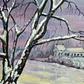 Winter Tree by Saga Sabin