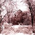 Winter Wonderland Pink by Julie Hamilton