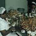 Women Pick And Pack Crab Meat Into Cans by Robert Sisson