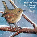 Wren In Snow With Bible Verse by Joyce Geleynse