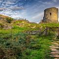 Ye Olde Path  by Adrian Evans
