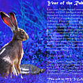 Year Of The Rabbit 2011 . Blue by Wingsdomain Art and Photography