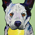 Yellow Ball by Pat Saunders-White