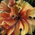 Yellow Hibiscus by Patricia Halstead