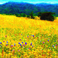 Yellow Hills by Wingsdomain Art and Photography