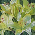 Yellow Lilies With Buds by Sharon Freeman