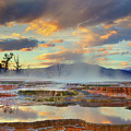 Yellowstone National Park-mammoth Hot Springs by Kevin McNeal