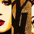 Yls Retrospective  by Lelia DeMello
