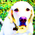 You Are My World - Yellow Lab Art by Sharon Cummings
