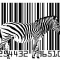 Zebra Barcode by Michael Tompsett
