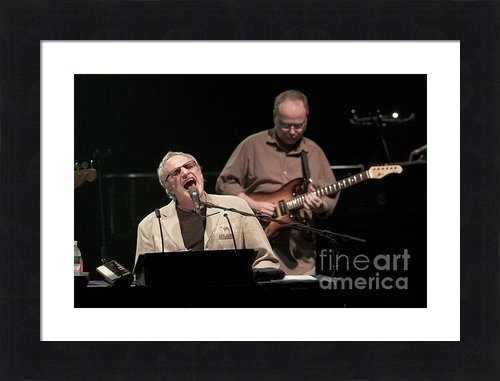 Front Row  Photographs  - Steely Dan Print