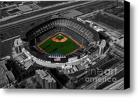 Thomas Woolworth - US Cellular Field Chicago... Print