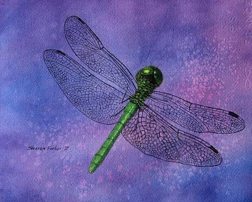 Sharon Farber - Dragonfly on Purple Print