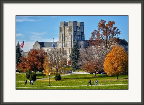 Mitch Cat - Burruss Hall Print