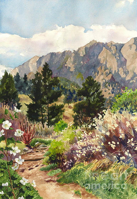 Anne Gifford - April Hike Print