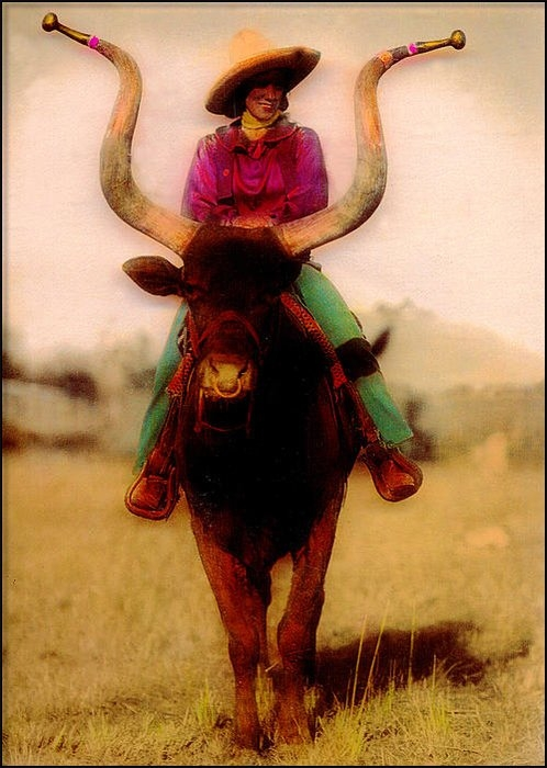 JDon Cook - Cowgirl On A Bull Print