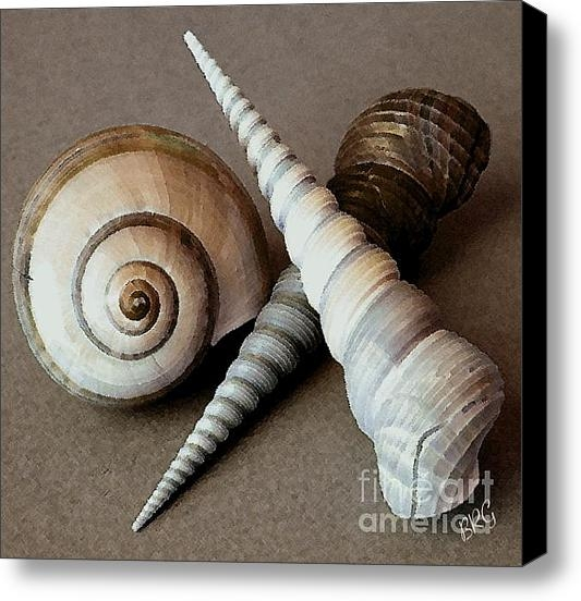 Ben and Raisa Gertsberg - Seashells Spectacular No ... Print
