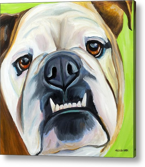 Melissa Smith - English Bulldog Print