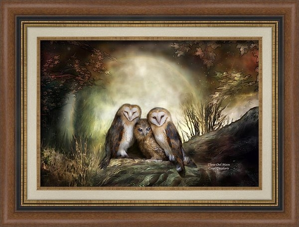 Carol Cavalaris - Three Owl Moon Print