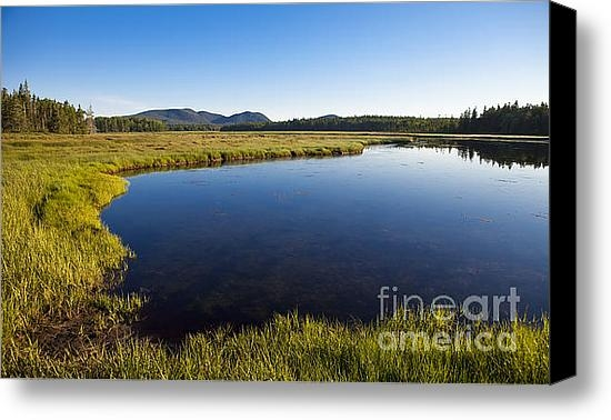 Diane Diederich - Salt Pond at Acadia Print