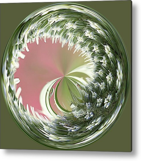 Cindi Ressler - Sea Holly Orb Print