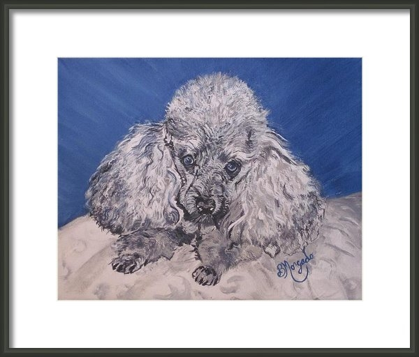 Brenda Morgado - Holly The Silver Poodle  Print