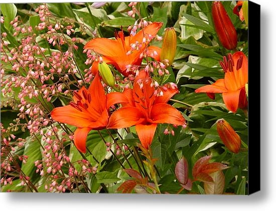 Dennis Leatherman - Blushing Flowers Print