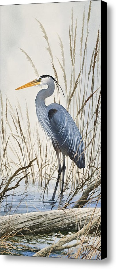 James Williamson - Herons Natural World Print