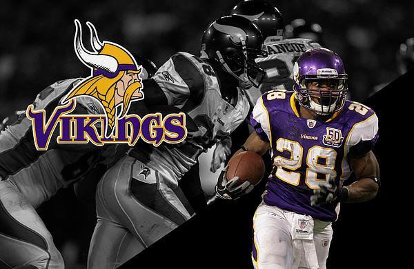 Joe Hamilton - Adrian Peterson Vikings Print