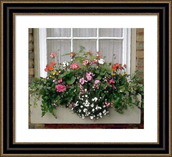 Elaine Plesser - Window Box of Mixed Flowe... Print