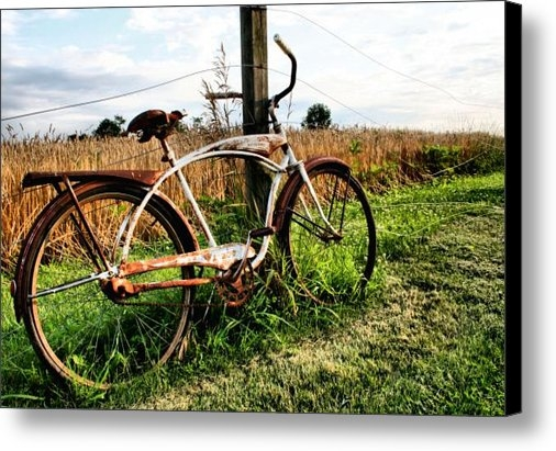 Doug Hockman Photography - Forgotten Bicycle Print