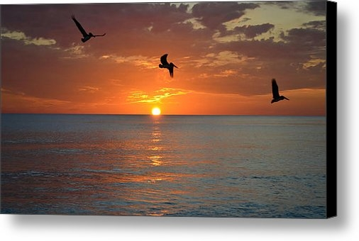 Elbe Photography - Sunset Trio Print