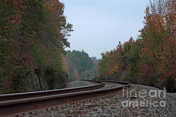 Lisa Holmgreen - Autumn Railway Print